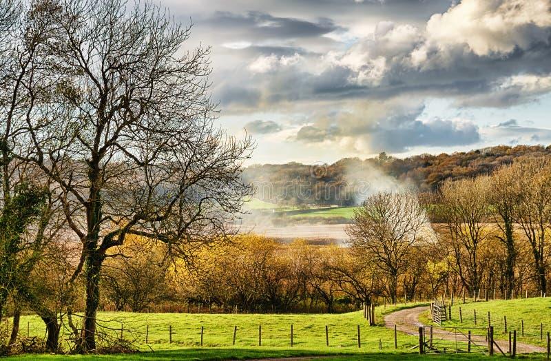 Campo rural cerca de Leighton Moss fotos de archivo libres de regalías