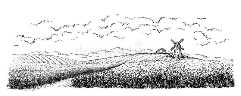 Campo rural con trigo maduro en el fondo del molino, del pueblo y de nubes stock de ilustración