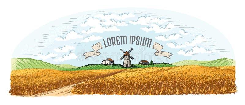 Campo rural con trigo maduro en el fondo del molino, del pueblo y de nubes ilustración del vector