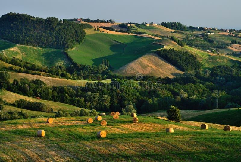 Campo rural italiano   fotos de stock