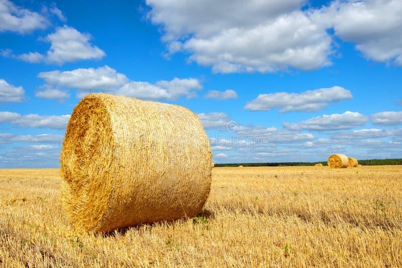 Campo rural paisagístico com fardos de feno fotos de stock royalty free