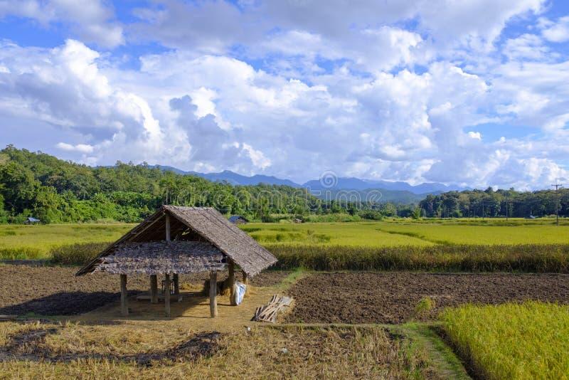 Campo simple en Tailandia del norte imagenes de archivo