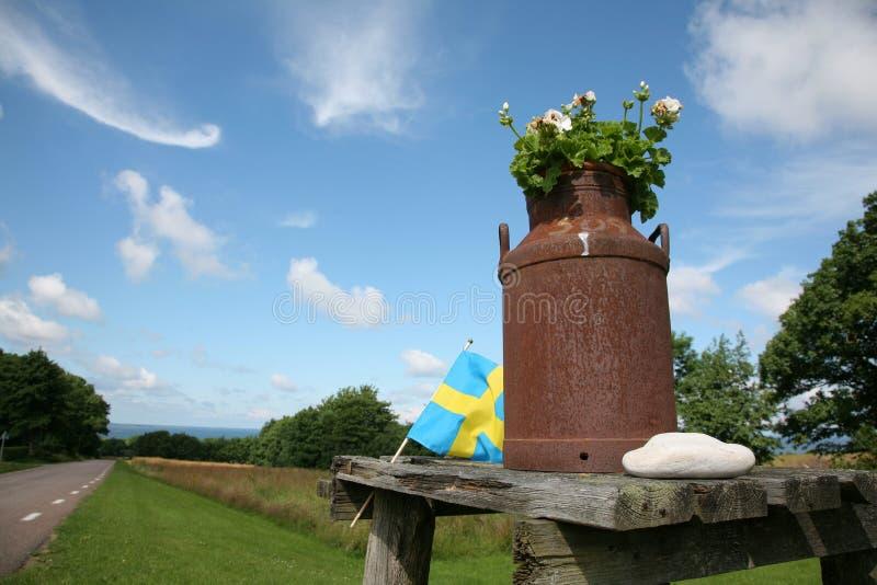 Campo sueco fotos de archivo