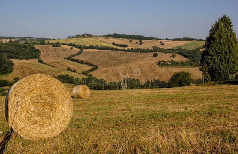 Campo Todi próximo - Úmbria - Itália foto de stock