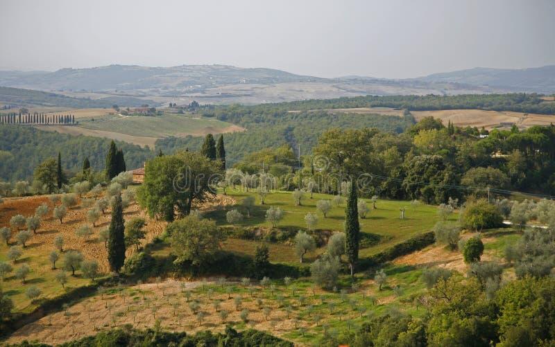 Campo Toscana fotos de archivo libres de regalías