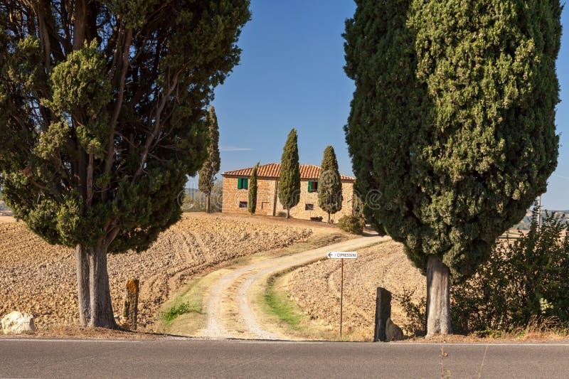 Campo toscano cerca de Pienza, Toscana, Italia fotos de archivo libres de regalías