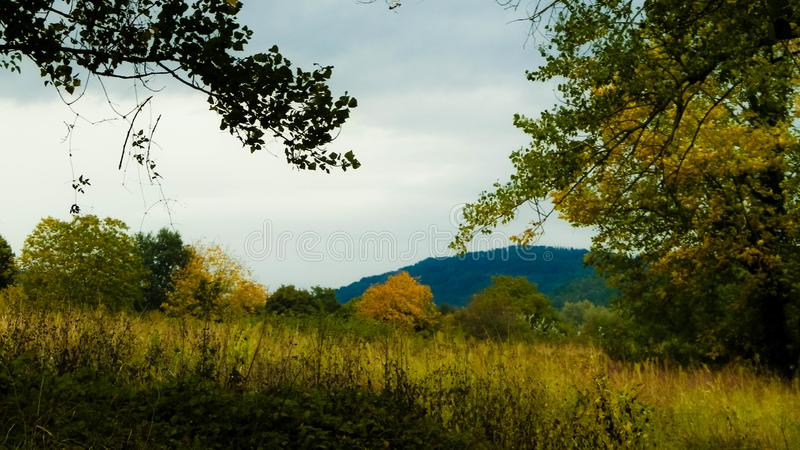 Campo toscano en un día nublado imagen de archivo
