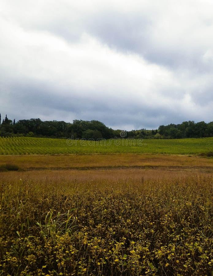 Campo toscano en un día nublado imágenes de archivo libres de regalías