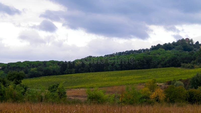 Campo toscano en un d?a nublado fotografía de archivo libre de regalías