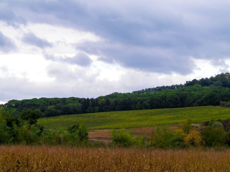 Campo toscano en un d?a nublado foto de archivo libre de regalías