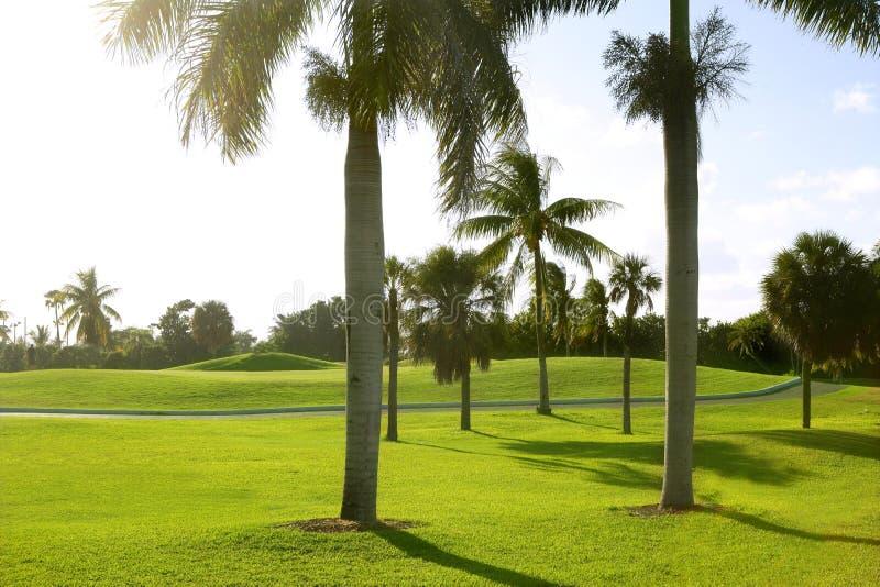 Campo tropical do golfe de Miami Key Biscayne imagem de stock royalty free