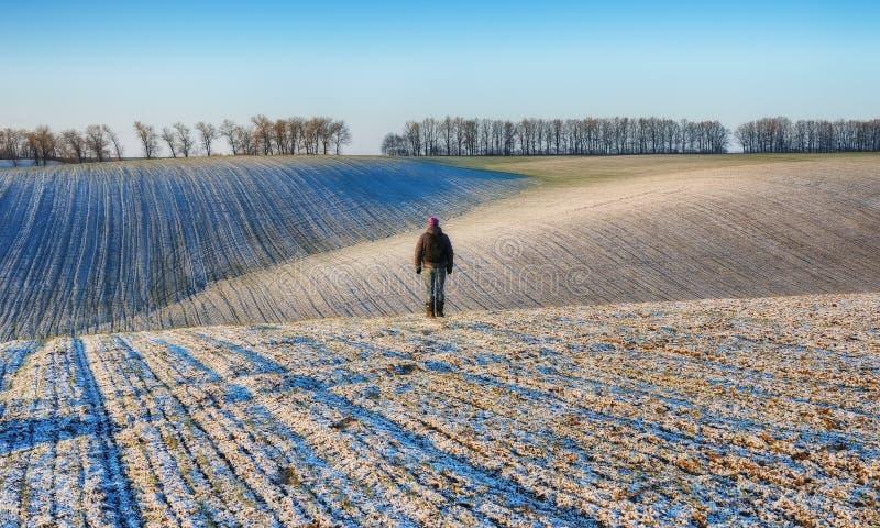 Campo una mattina pittoresca di inverno Uomo nel campo fotografia stock libera da diritti