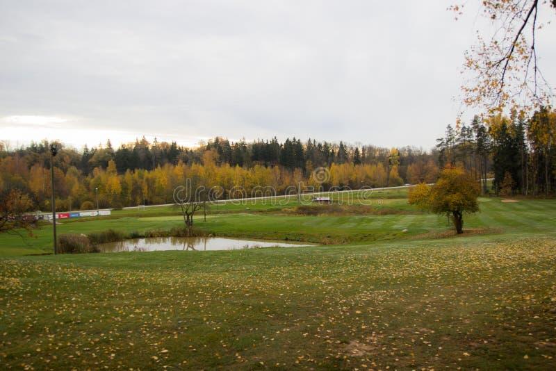 Campo verde, clube de golfe, outono imagens de stock royalty free