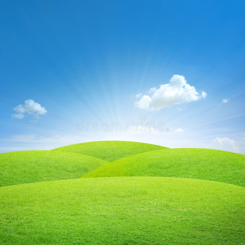 Campo verde com céu azul fotografia de stock royalty free