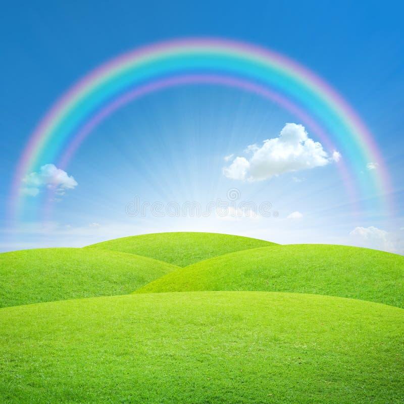 Campo verde com céu azul e arco-íris ilustração do vetor