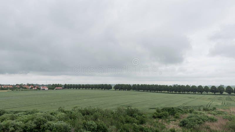 Campo verde con erba verde ed il cielo nuvoloso grigio Vista scenica del prato e del villaggio Campagna del paesaggio fotografia stock