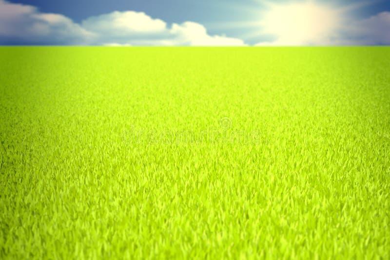 Campo verde 3D imagem de stock royalty free