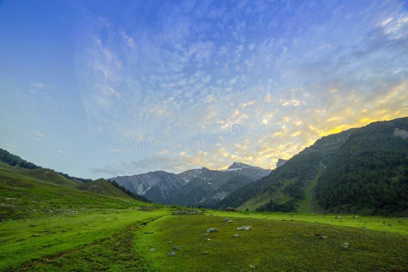 Download Campo verde de la mañana foto de archivo. Imagen de glaciar - 42440606