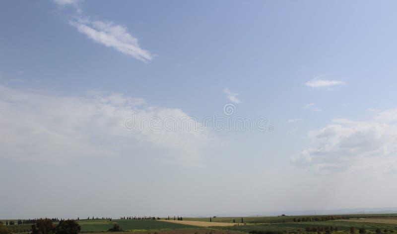 Campo verde di agricoltura con il cielo fotografia stock libera da diritti