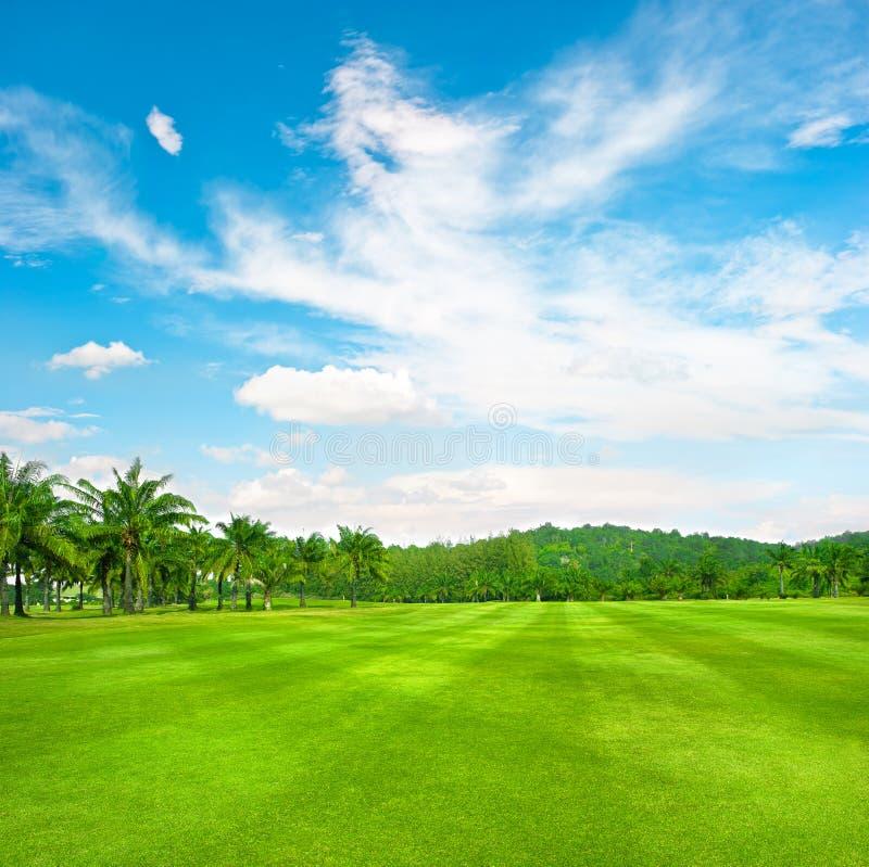 Campo verde di golf con le palme sopra il cielo nuvoloso fotografie stock