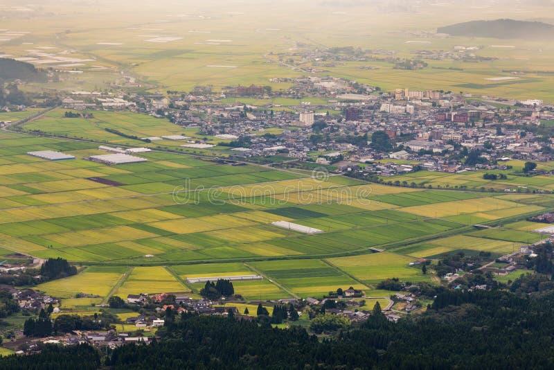 Campo verde do arroz na vila de Aso em Kumamoto, Japão fotos de stock royalty free