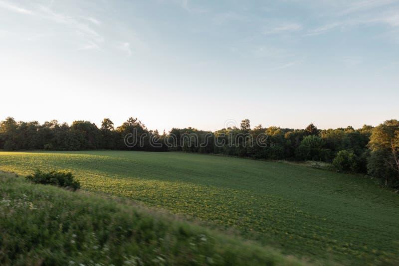 Campo verde e céu azul com o sol brilhante do verão Natureza bonita Campo da paisagem Euro-viagem imagem de stock