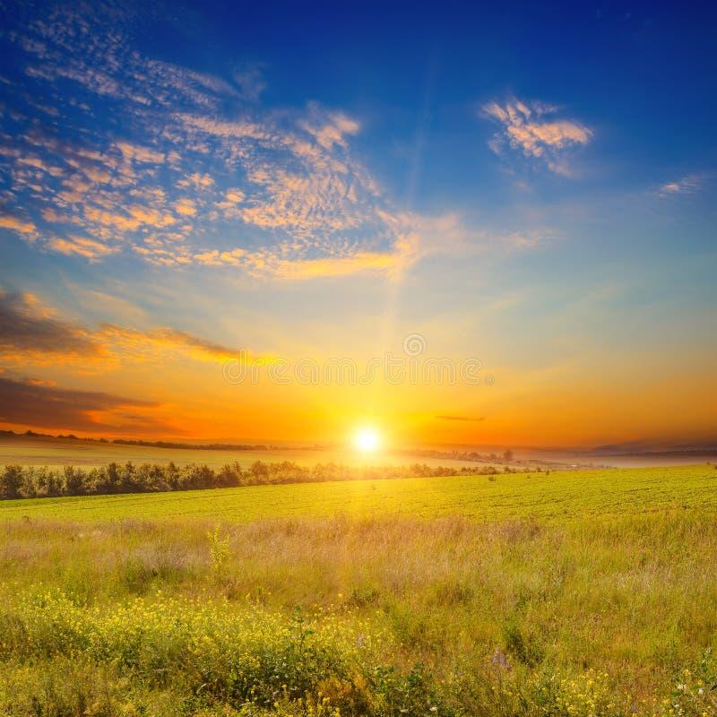 Campo verde e tramonto dell'ampio paesaggio fotografia stock
