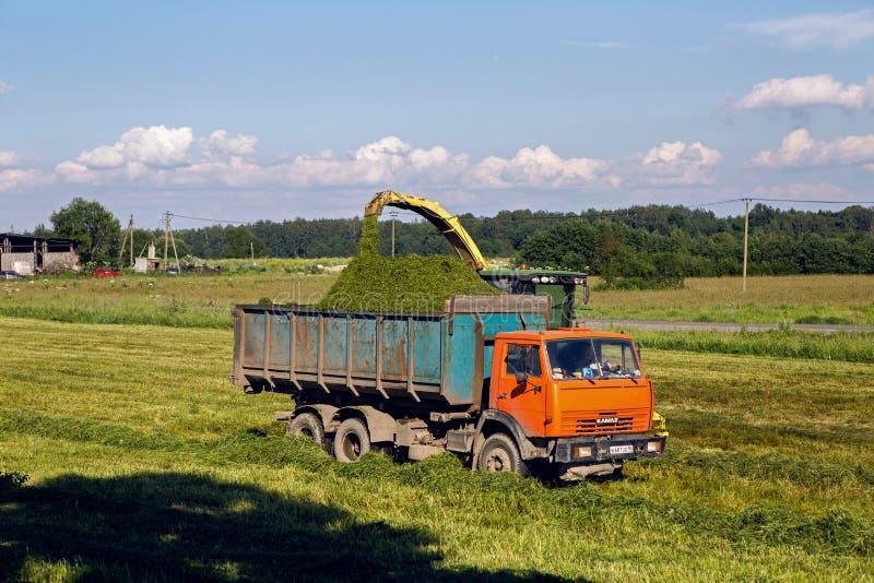 Campo verde en el verano del camión que conduce al lado de la cosechadora fotos de archivo