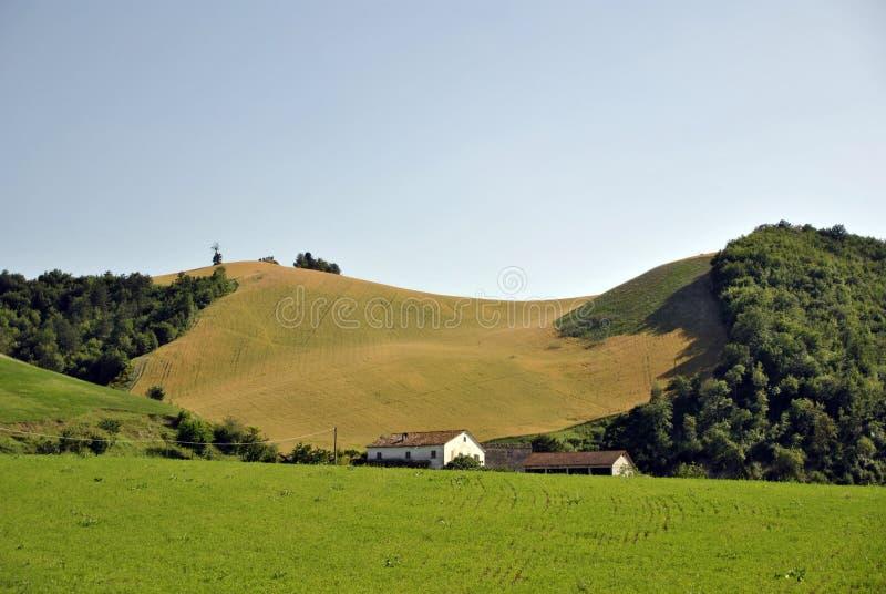 Campo verde italiano en Italia fotos de archivo libres de regalías