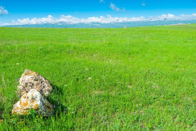 Campo verde, Mountain View, pietre nell'angolo sinistro - bello paesaggio laconico fotografie stock libere da diritti