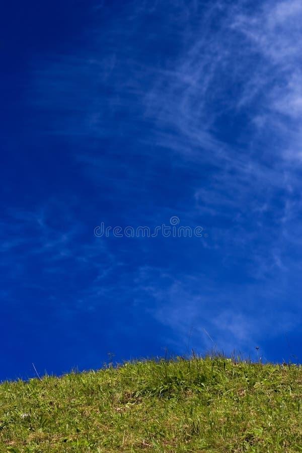 Campo verde su cielo blu fotografia stock libera da diritti