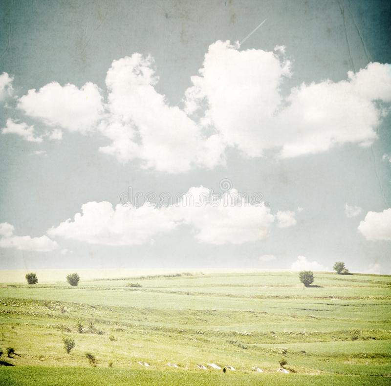 Campo verde y cielo azul fotos de archivo libres de regalías