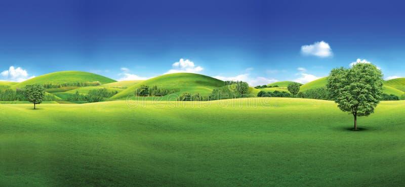 Campo verde y cielo azul del campo de hierba verde y del cielo azul brillante libre illustration