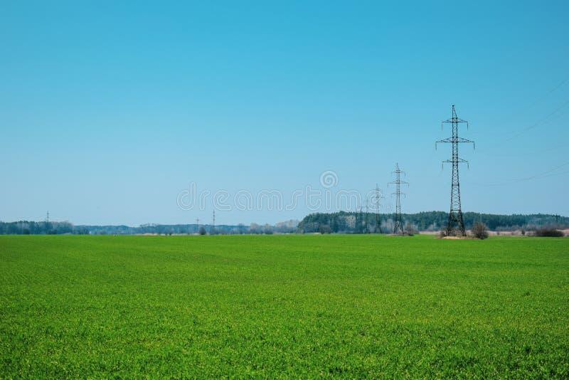 Campo verde y cielo azul, en las l?neas el?ctricas de distancia con muchos alambres imagen de archivo