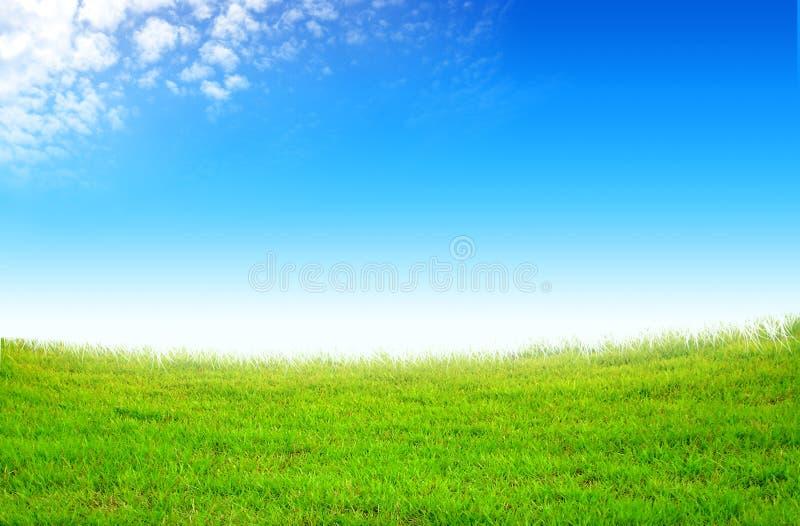 Campo verde y nubes blancas foto de archivo