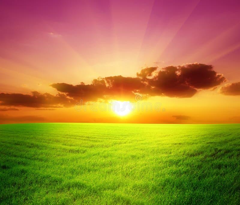 Campo verde y puesta del sol hermosa imagenes de archivo