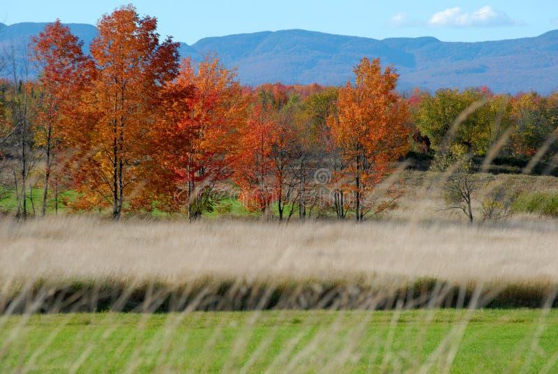 Campo Vermont del otoño fotografía de archivo libre de regalías