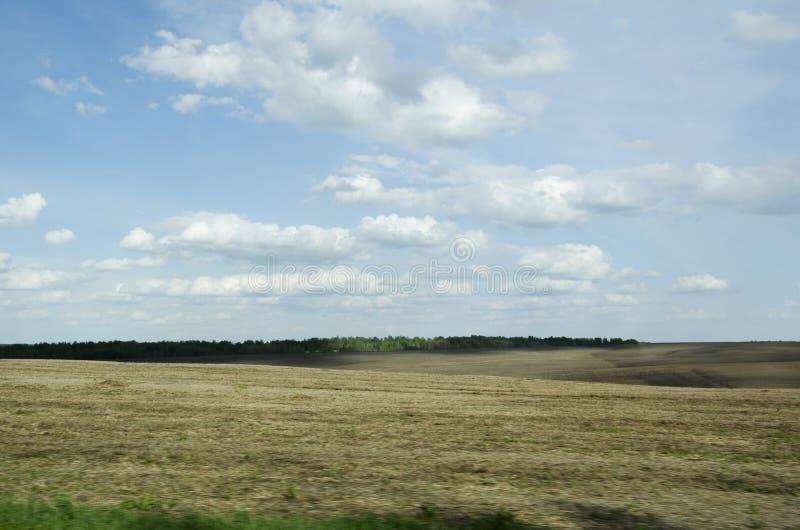 Campo y cielo azul fotos de archivo libres de regalías