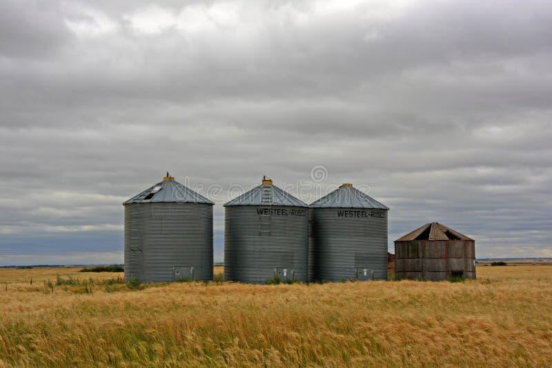 Campo y silo de trigo foto de archivo