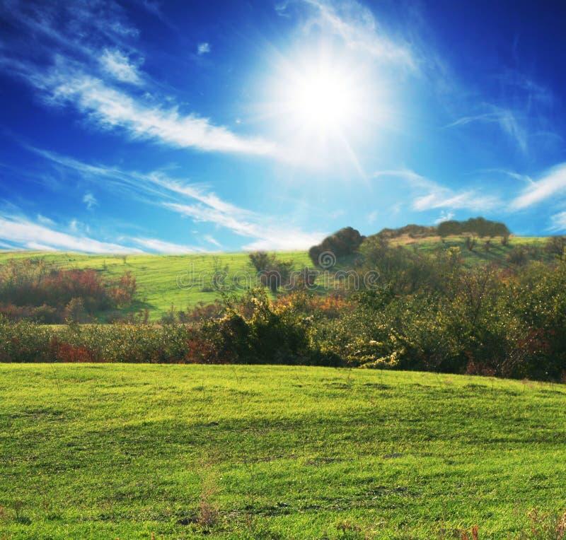 Campo y sol imagen de archivo libre de regalías