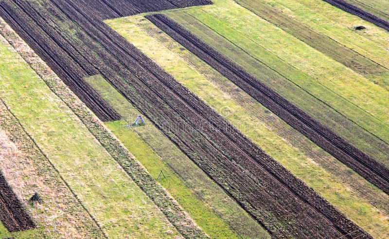 Campos agrícolas fotografia de stock royalty free