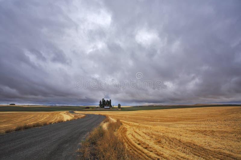 Campos após a colheita e a estrada fotos de stock