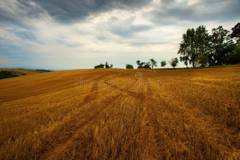 Campos arados en día nublado imagen de archivo