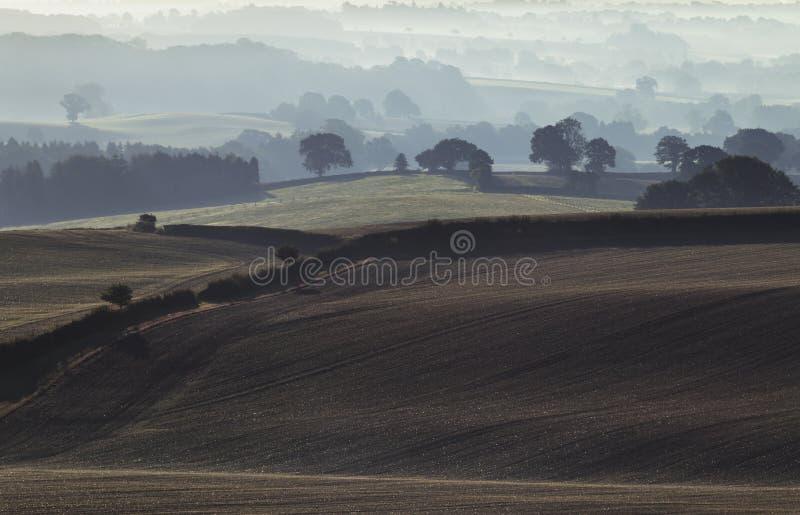 Campos britânicos do campo na névoa da manhã imagem de stock royalty free