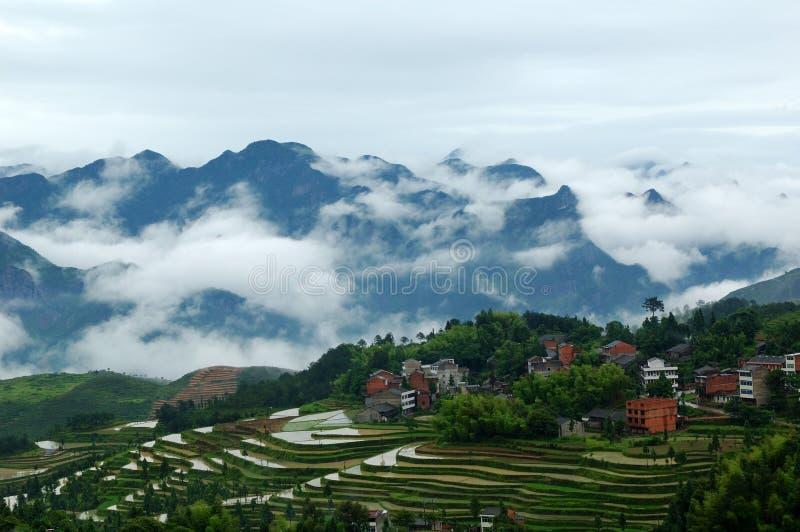 Campos colgantes de Mingao imágenes de archivo libres de regalías