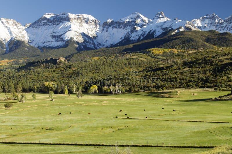 Campos, colinas a los picos nevados fotos de archivo libres de regalías