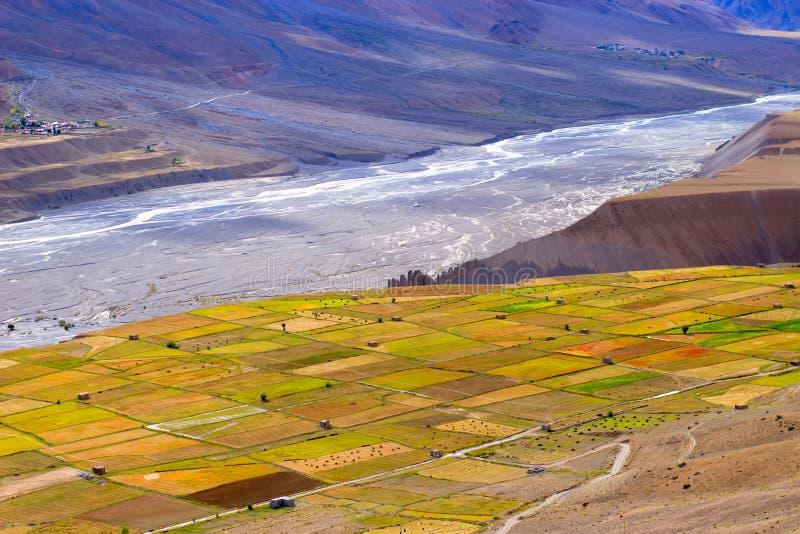 Campos coloreados de las diversas cosechas de grano en montañas imagen de archivo
