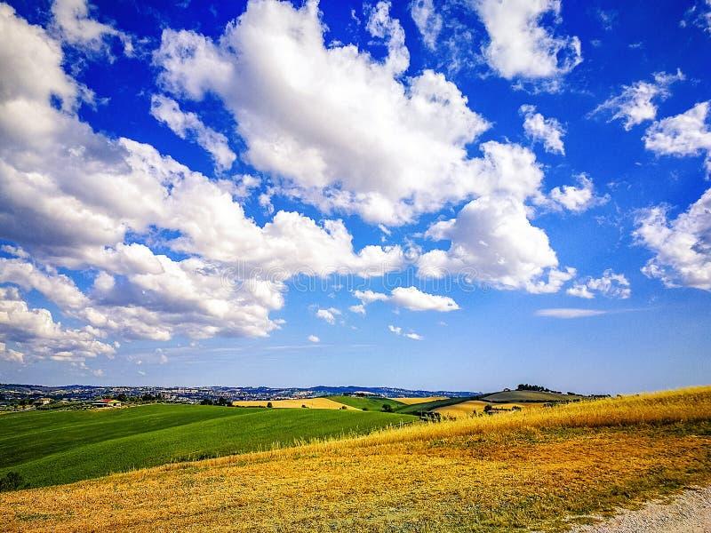 Campos cultivados en las colinas de la región de Marche en el mar adriático, Italia imagen de archivo