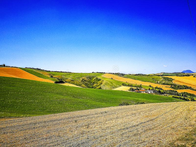 Campos cultivados en las colinas de la región de Marche en el mar adriático, Italia foto de archivo