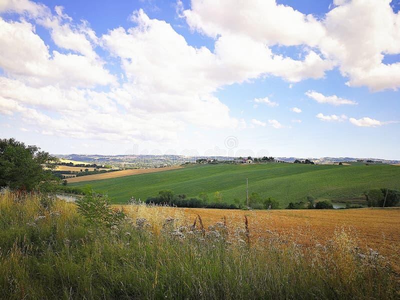 Campos cultivados en las colinas de la región de Marche en el mar adriático, Italia imagen de archivo libre de regalías
